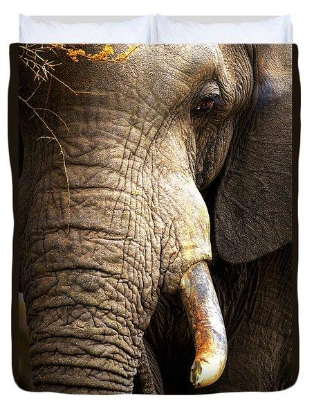 Elephant Close-up Portrait Duvet Cover