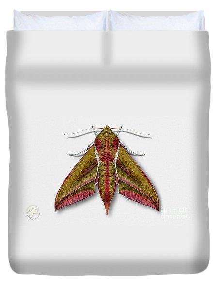 Elephant Hawk Moth Butterfly - Deilephila Elpenor Naturalistic Painting - Nettersheim Eifel Duvet Cover