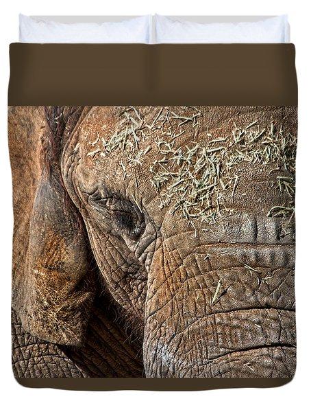 Elephant Never Forgets Duvet Cover by Miroslava Jurcik