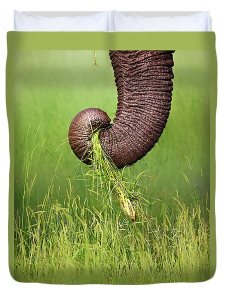 Elephant Trunk Pulling Grass Duvet Cover