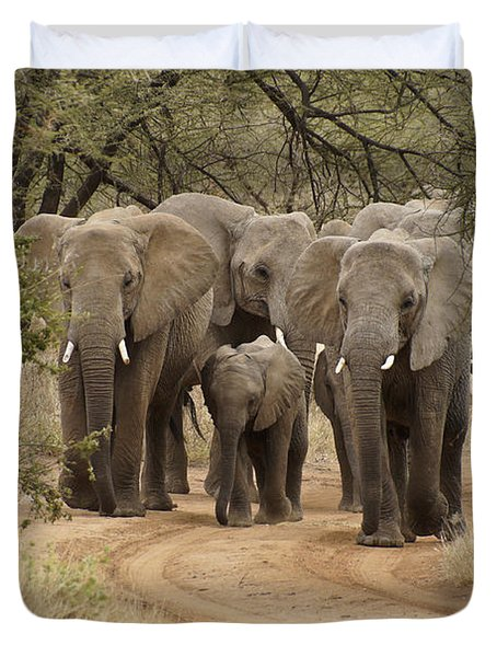 Elephants Have The Right Of Way Duvet Cover