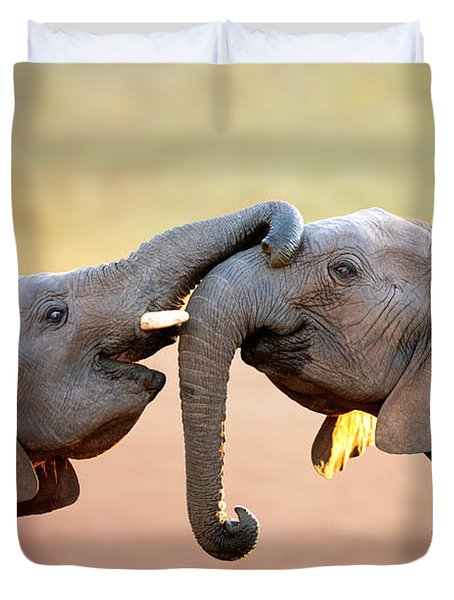 Elephants Touching Each Other Duvet Cover
