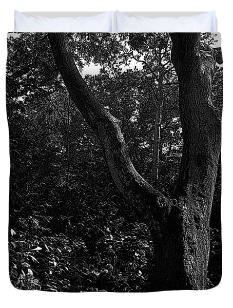 Duvet Cover featuring the photograph Elizabethan Gardens Tree In B And W by Greg Reed