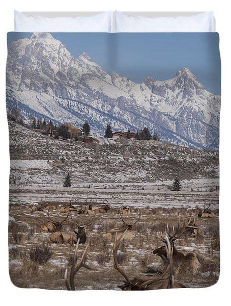 Elk And The Grand Tetons Duvet Cover