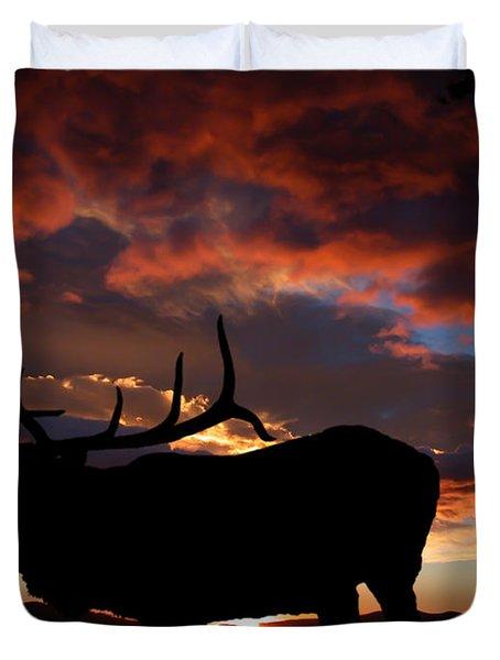 Elk At Sunset Duvet Cover