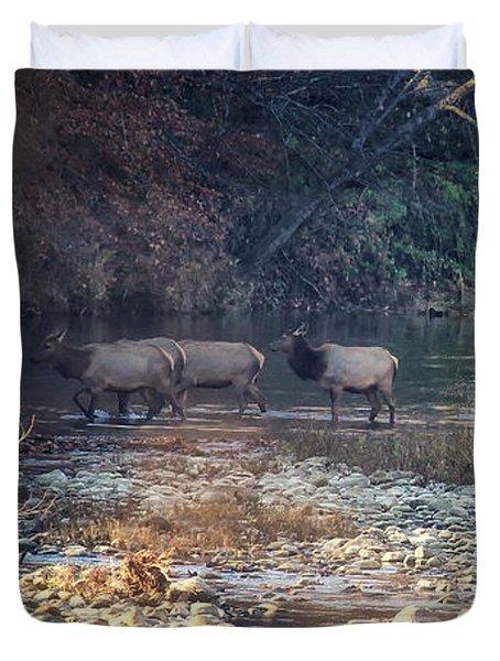 Elk Crossing The Buffalo River Duvet Cover