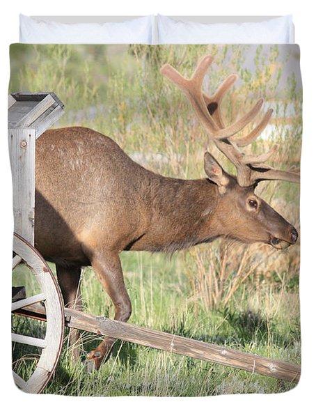Elk Drawn Carriage Duvet Cover