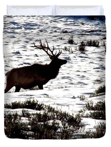 Duvet Cover featuring the photograph Elk Silhouette by Sharon Elliott