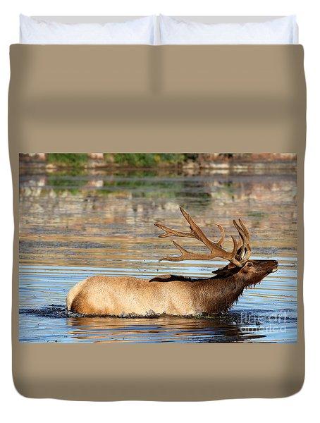 Elk Cooling Down In Lake Duvet Cover