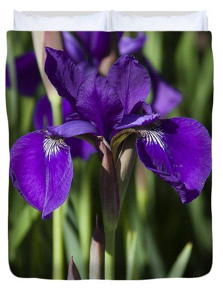 Eloquent Iris Duvet Cover
