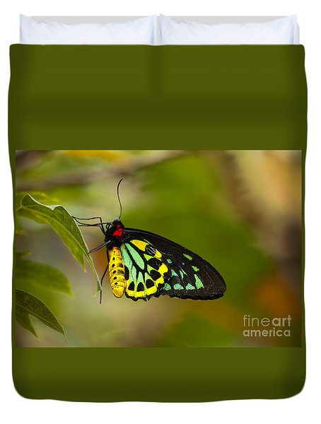 Emerald Beauty Duvet Cover by Mike  Dawson