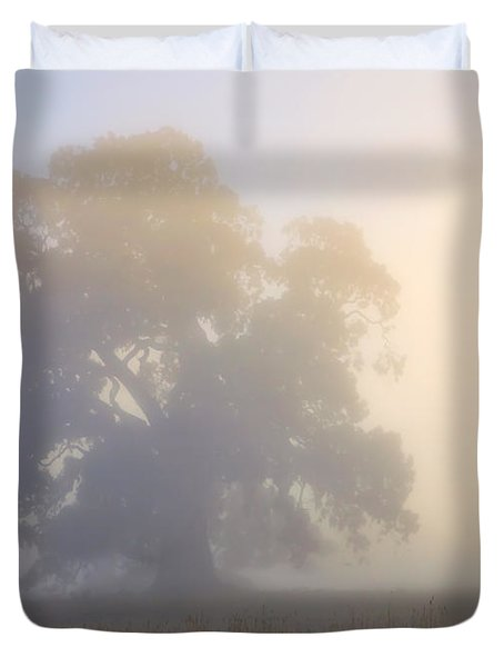 Emerging Duvet Cover by Mike  Dawson