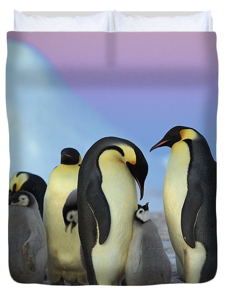 Emperor Penguin Parents And Chick Duvet Cover by Frederique Olivier
