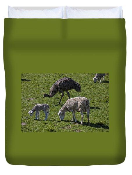 Emu And Sheep Duvet Cover