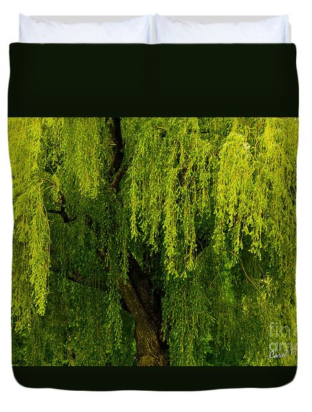 Enchanting Weeping Willow Tree  Duvet Cover by Carol F Austin