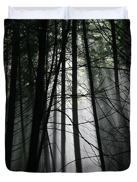 Encounter Of The Vermont Kind No.2 Duvet Cover by Neal Eslinger