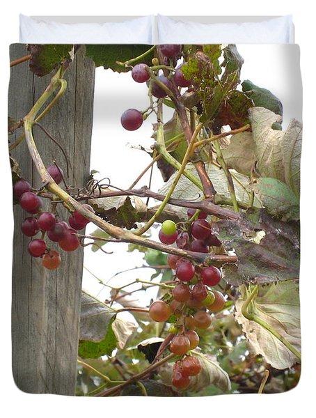 End Of Season Grapes Duvet Cover by Jennifer E Doll