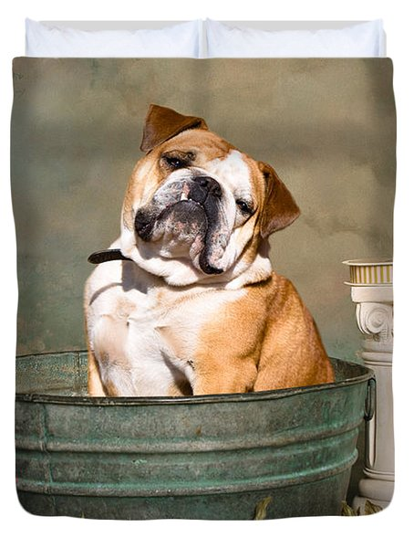 English Bulldog Portrait Duvet Cover by James BO  Insogna