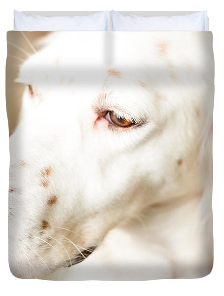 English Setter In Natural Light Duvet Cover