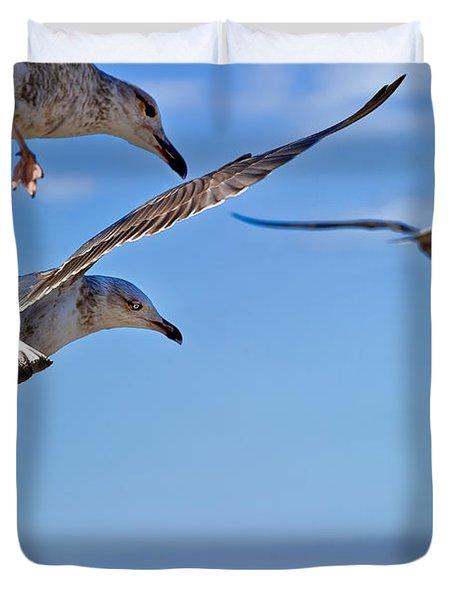 Essaouira Seagull Duvet Cover