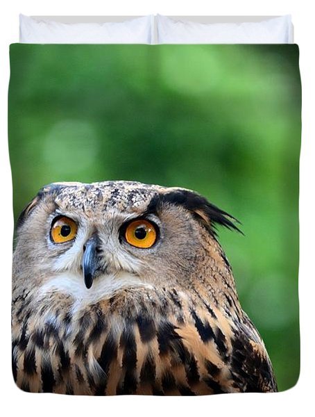 Eurasian Or European Eagle Owl Bubo Bubo Stares Intently Duvet Cover