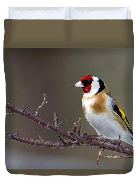 European Goldfinch  Duvet Cover