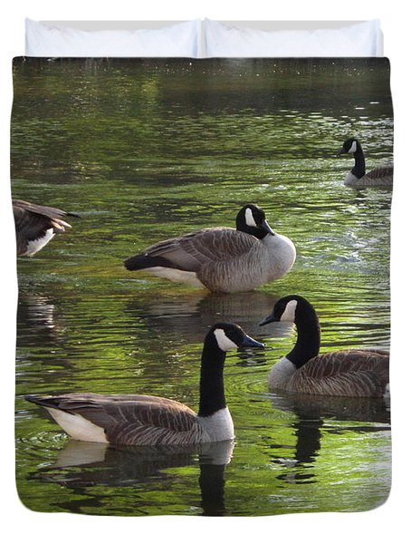 Evening Geese Gathering Duvet Cover