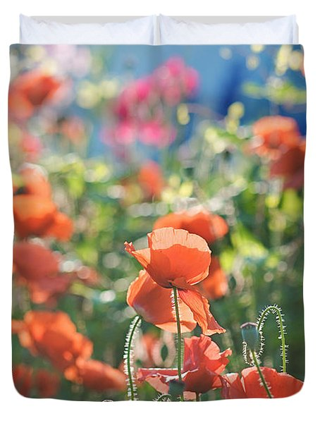 Evening Lights The Poppies Duvet Cover by Lisa Knechtel