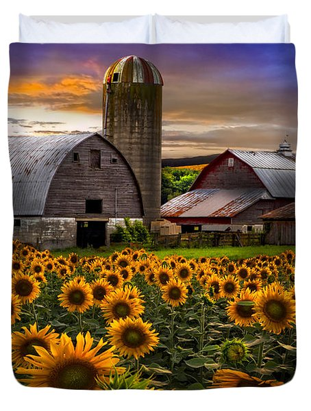 Evening Sunflowers Duvet Cover by Debra and Dave Vanderlaan