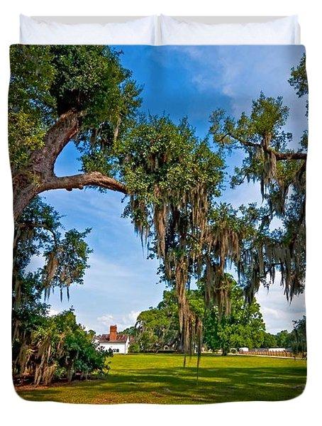 Evergreen Plantation II Duvet Cover by Steve Harrington
