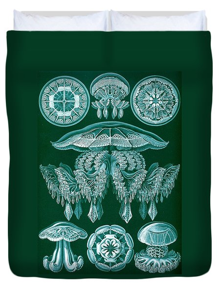 Examples Of Discomedusae Duvet Cover by Ernst Haeckel