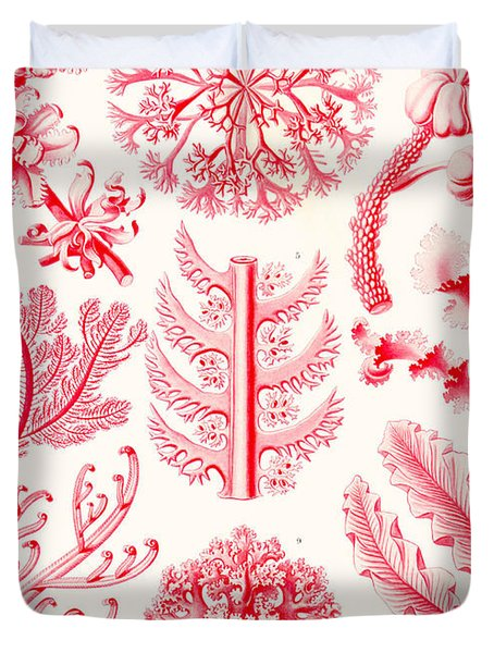Examples Of Florideae From Kunstformen Der Natur Duvet Cover by Ernst Haeckel