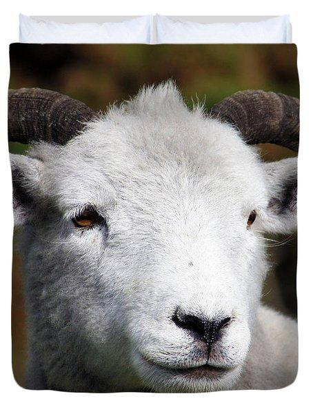 Exmoor Horn Sheep Duvet Cover by Terri Waters