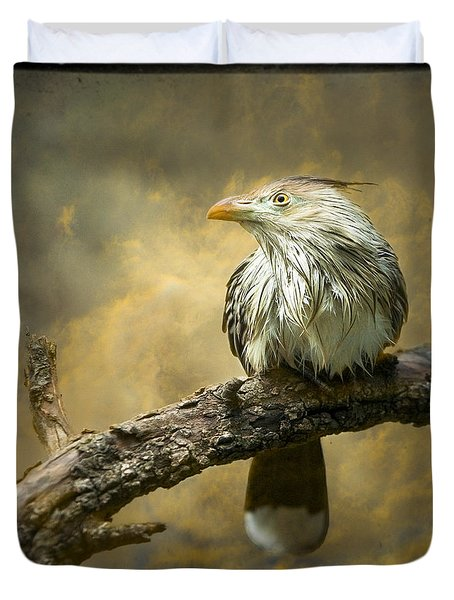 Exotic Bird - Guira Cuckoo Bird Duvet Cover by Gary Heller