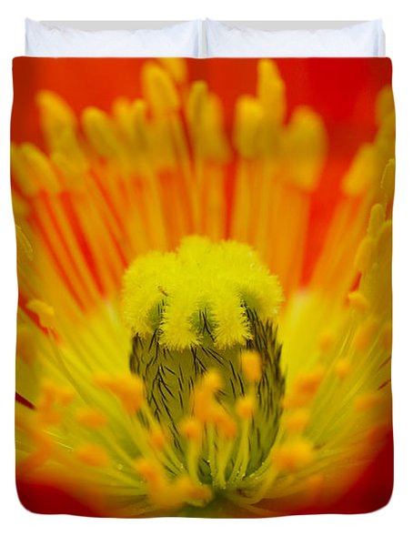 Explosion Of Colour Duvet Cover by Carole Lloyd