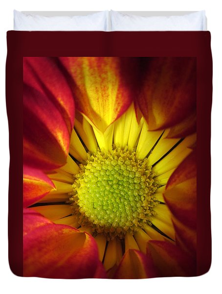 Eye Candy Duvet Cover