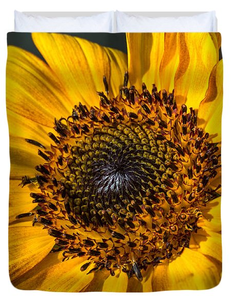 Eye Of The Sun Duvet Cover by Michael Moriarty