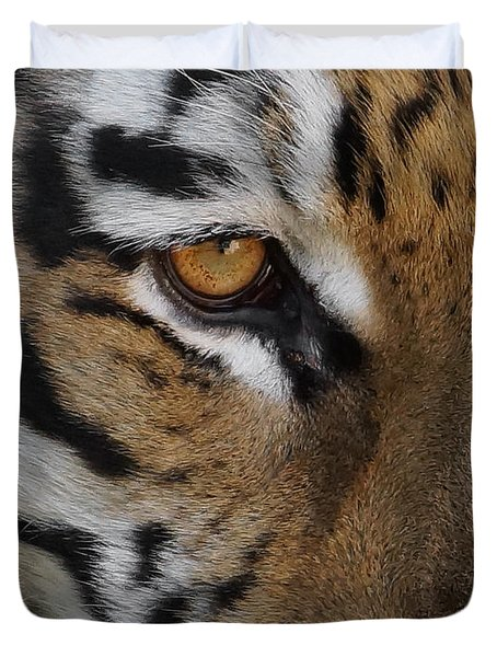 Eye Of The Tiger Duvet Cover by Ernie Echols