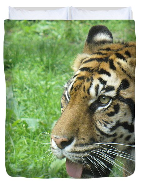 Duvet Cover featuring the photograph Eye Of The Tiger by Lingfai Leung