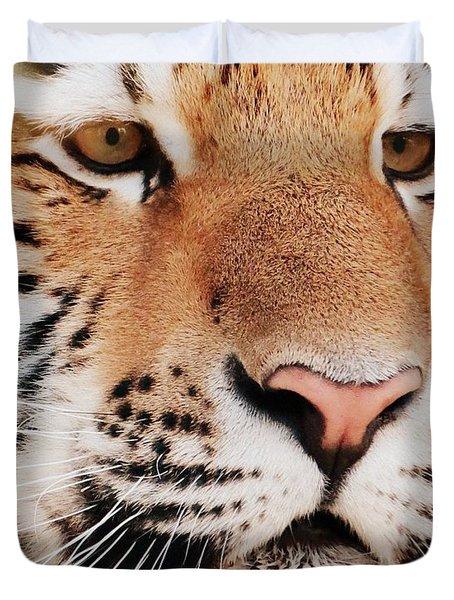 Eye Of The Tiger Duvet Cover by Ramona Johnston