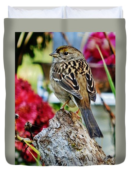 Duvet Cover featuring the photograph Eyeing The Sparrow by VLee Watson