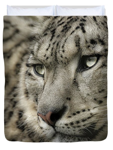 Eyes Of A Snow Leopard Duvet Cover