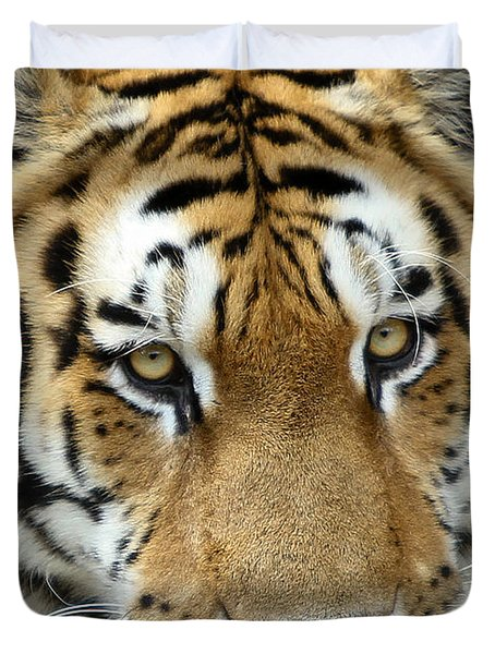 Duvet Cover featuring the photograph Eyes Of The Tiger by John Haldane