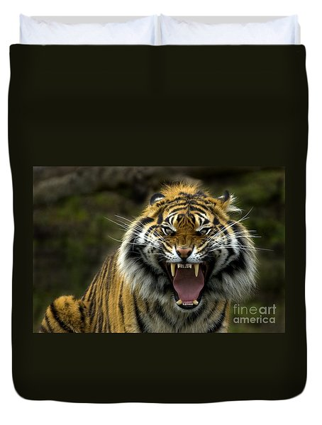 Eyes Of The Tiger Duvet Cover by Mike  Dawson