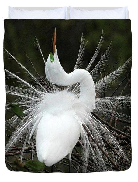 Fabulous Feathers Duvet Cover