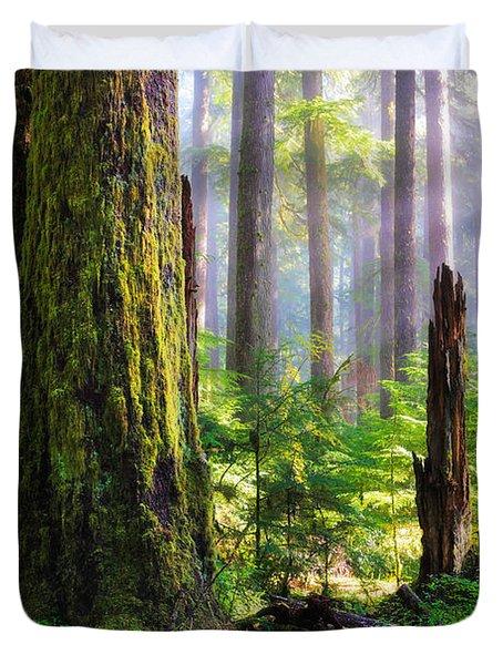 Fairy Tale Forest Duvet Cover by Inge Johnsson