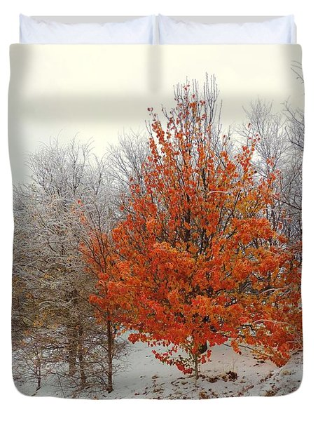 Fall And Winter Duvet Cover by Robert ONeil