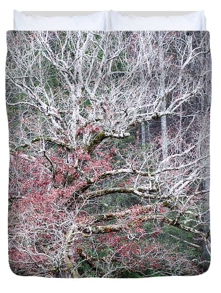 Duvet Cover featuring the photograph Fall At Cades Cove by Todd Blanchard