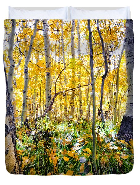 Fall At Silver Lake Duvet Cover
