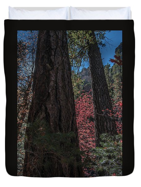 West Fork Perspective Duvet Cover